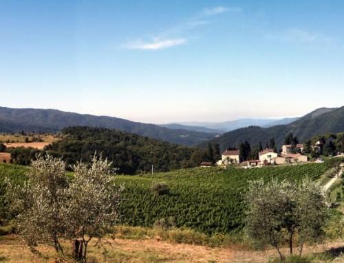 Azienda Agricola Frascole